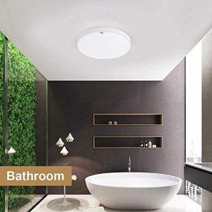 Bath Ceiling Lights