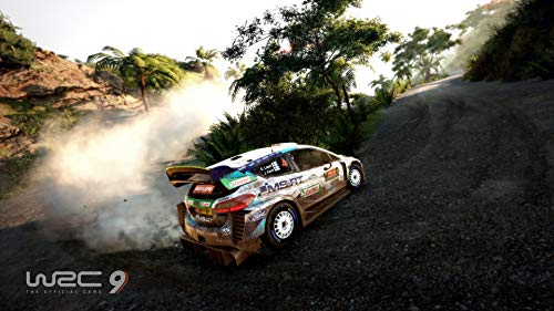 WRC 9 (PS5) 5