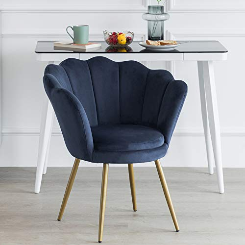 LEPAK Blue Velvet Chair Upholstered Shell Chair,Accent Chair Leisure Tub Chair Occasional Armchair for Living Room Cafe… 4