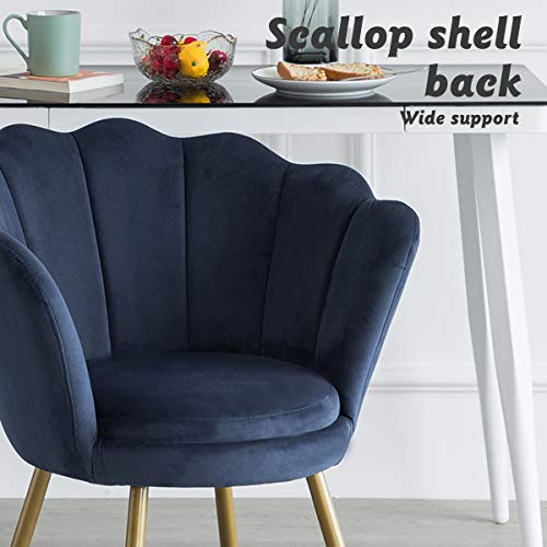 LEPAK Blue Velvet Chair Upholstered Shell Chair,Accent Chair Leisure Tub Chair Occasional Armchair for Living Room Cafe… 5